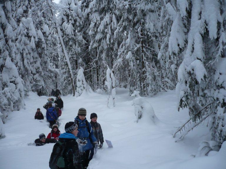Участники лыжных форматов могут передвигаться пешком. При этом транспортировать с собой лыжи не обязательно. Передвижение без лыж по лыжням и лыжным трассам запрещено.