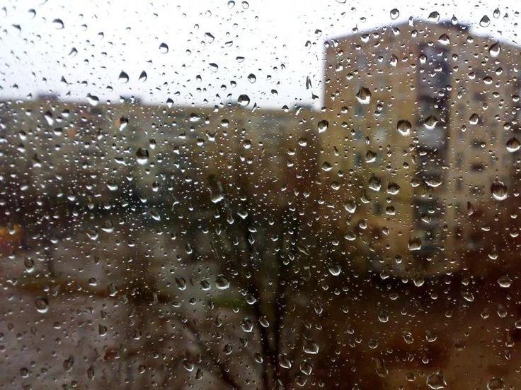 Проснулся. Заглушил будильник. На календаре — 2019 год, 29 декабря, воскресенье. За окном бесснежные сумерки. Дождь выбивает дробь по карнизу.