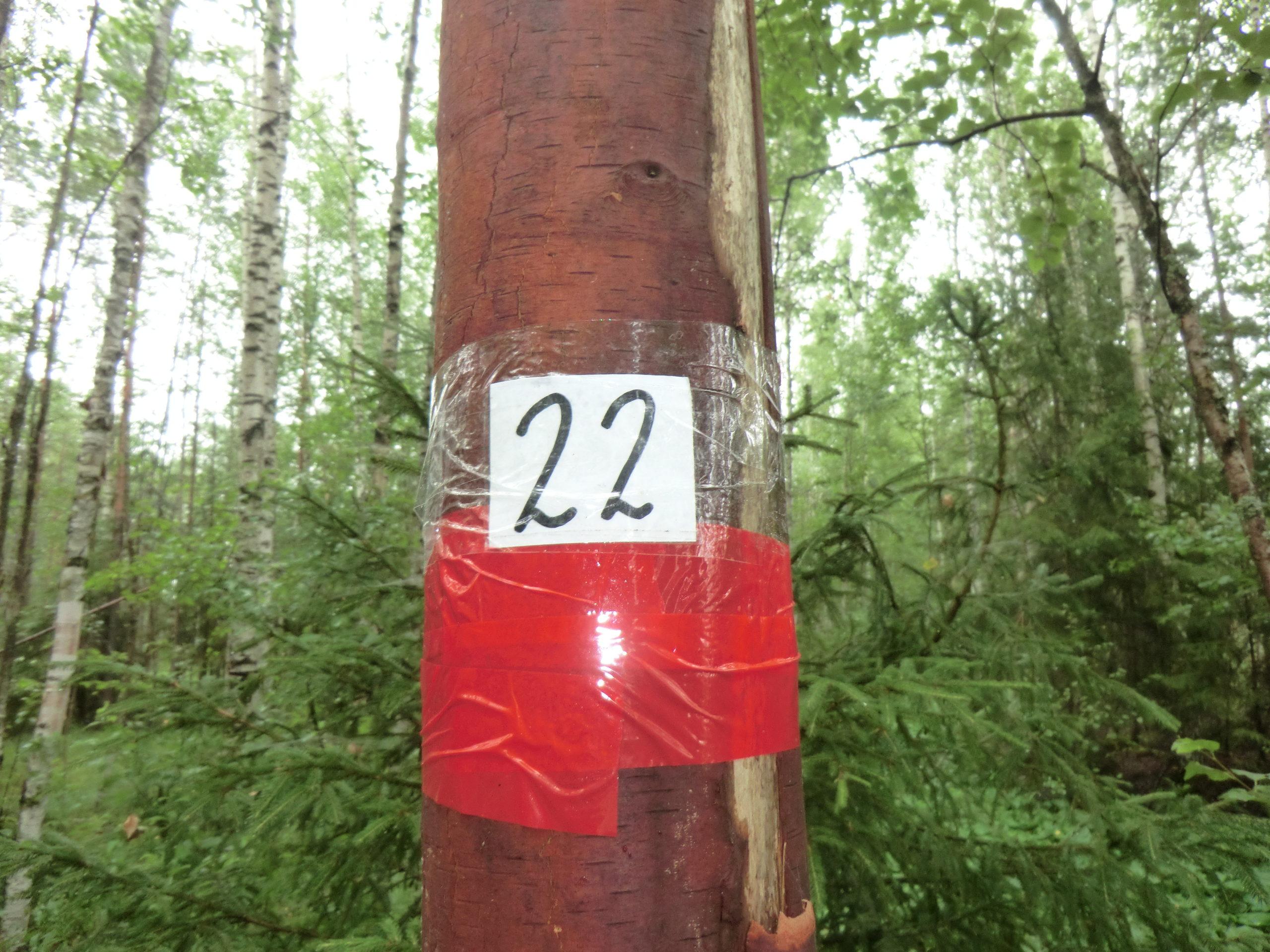 КП - 22