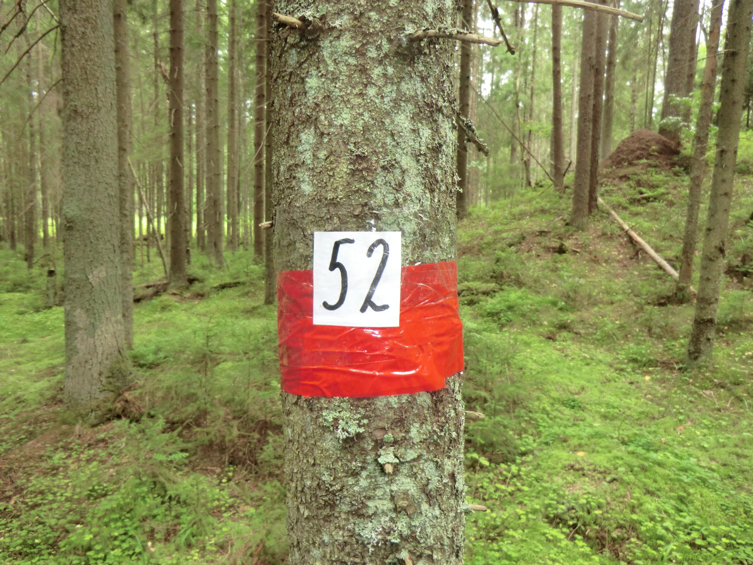 КП 52