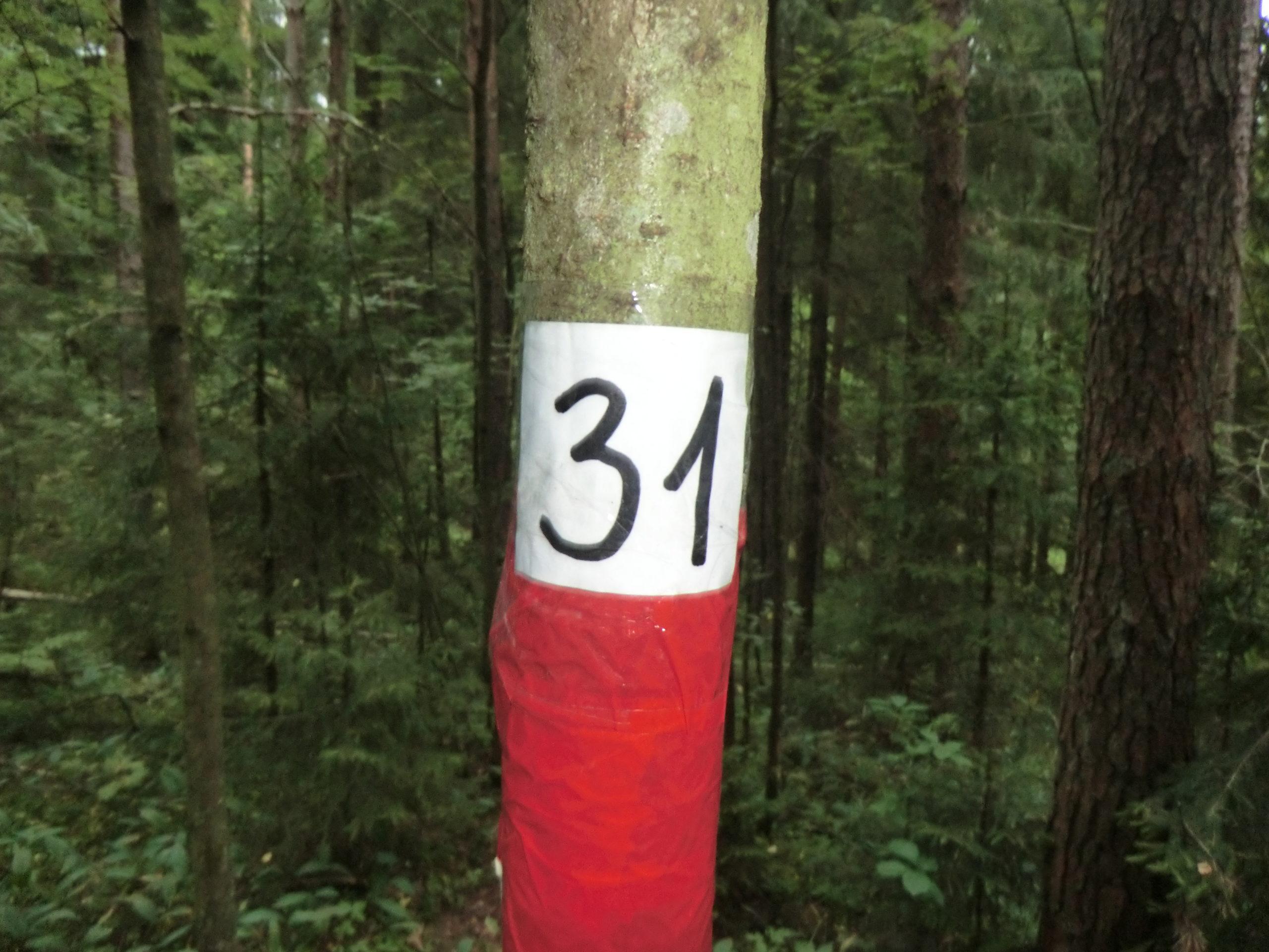 КП 31